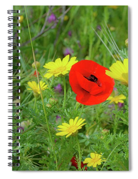 Spiral Notebook featuring the photograph The Red Spot by Arik Baltinester