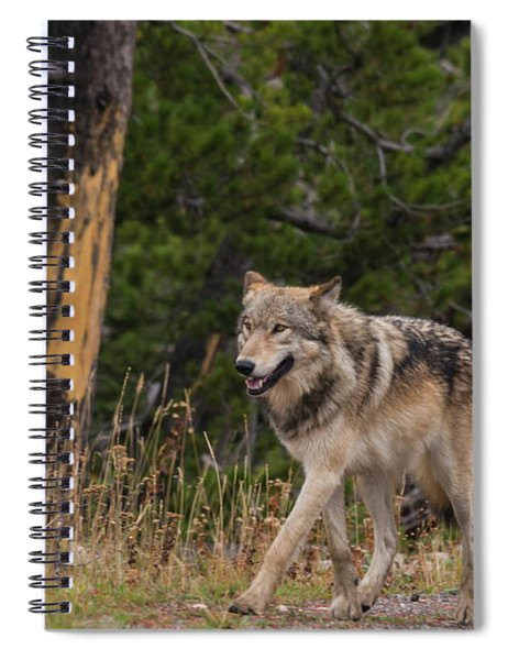 W1 Spiral Notebook