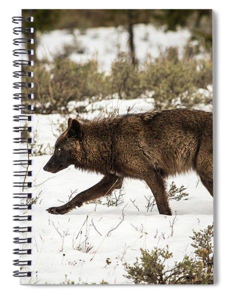 W10 Spiral Notebook