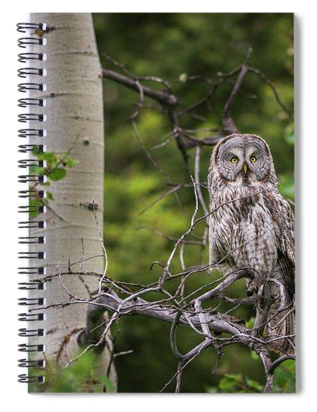 B14 Spiral Notebook