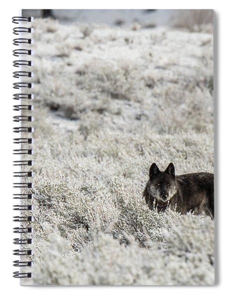 W18 Spiral Notebook