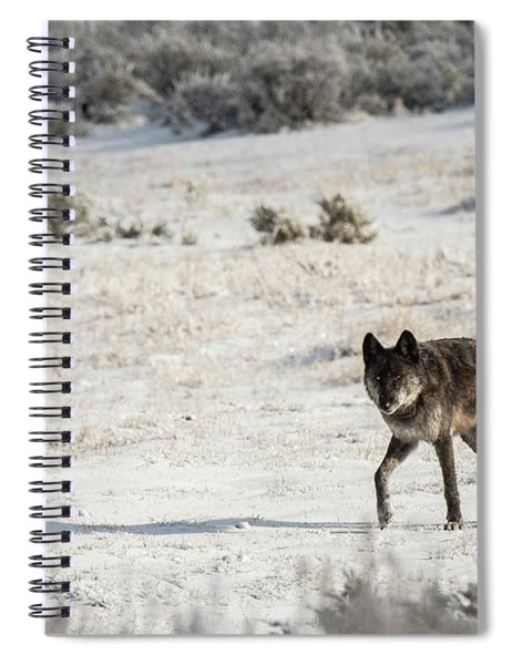 W19 Spiral Notebook