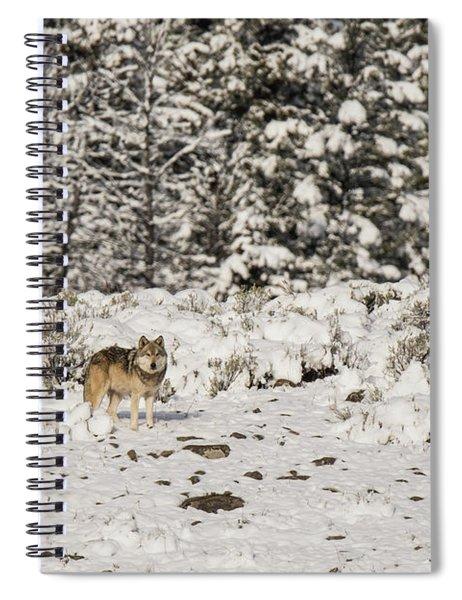 W20 Spiral Notebook