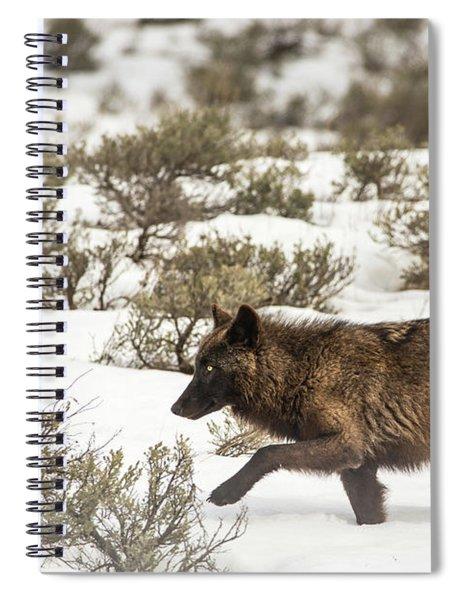 W3 Spiral Notebook