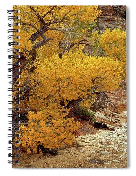 Zion National Park Autumn Spiral Notebook