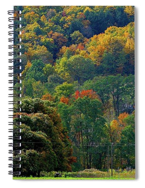 10-12-2009img2941a Spiral Notebook