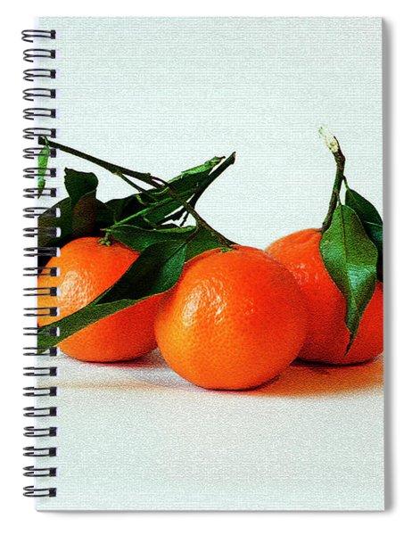 11--01-13 Studio. 3 Clementines Spiral Notebook