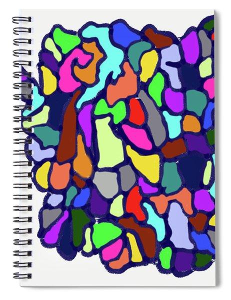 11-16-2018ba Spiral Notebook