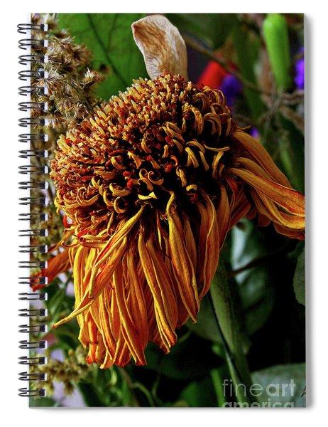 12-7-2008img1857a Spiral Notebook