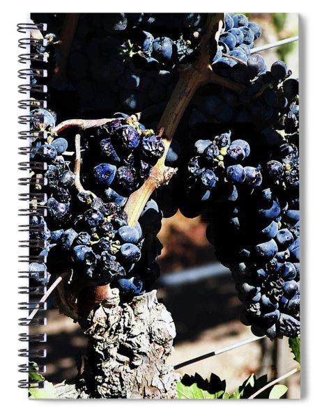 122918 Wine On The Vine Spiral Notebook