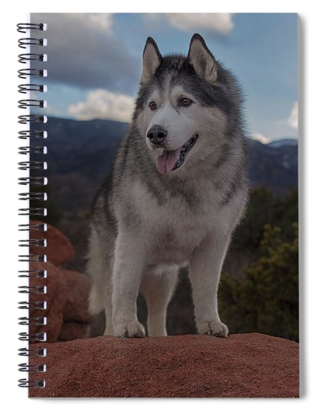 Timber Spiral Notebook