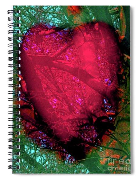 2-16-2009ab Spiral Notebook