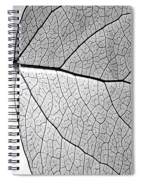Aspen Leaf Veins Spiral Notebook