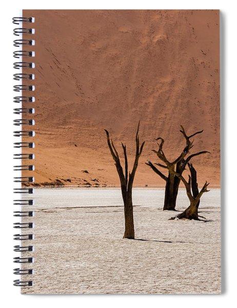 Deadvlei Desert Spiral Notebook