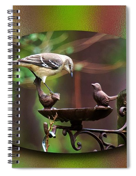 Northern Mockingbird Spiral Notebook by Robert L Jackson