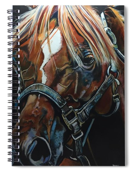 Shoo Fly Spiral Notebook