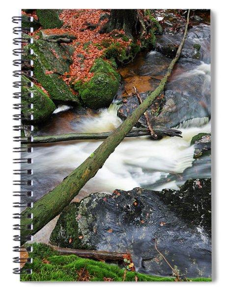 Stream In The Autumn Forest Spiral Notebook