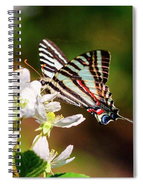 Zebra Swallowtail Spiral Notebook