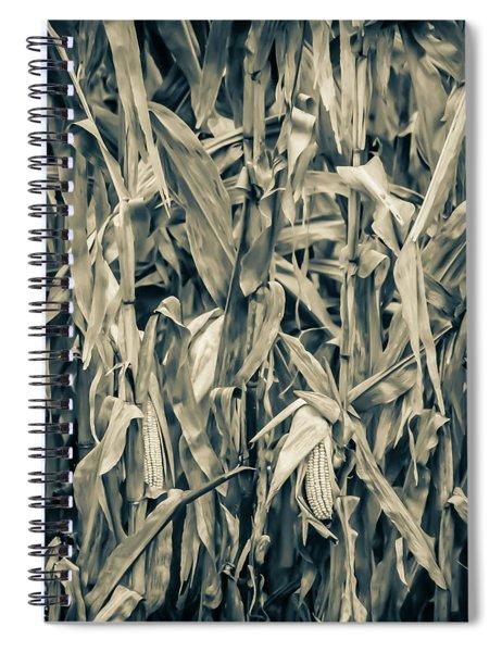 2018 Corn Spiral Notebook