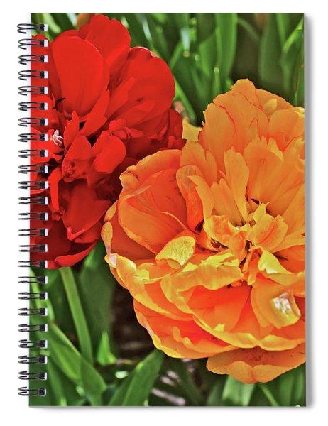 2019 Acewood Double Beauties Spiral Notebook