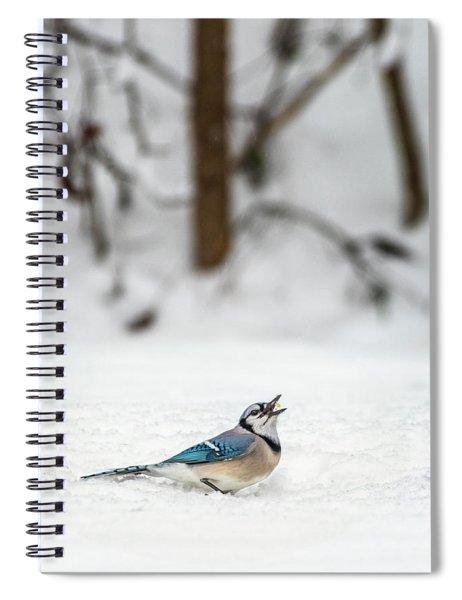 2019 First Snow Fall Spiral Notebook