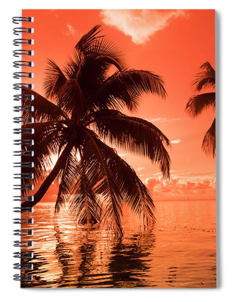Palm Trees At Sunset, Moorea, Tahiti Spiral Notebook