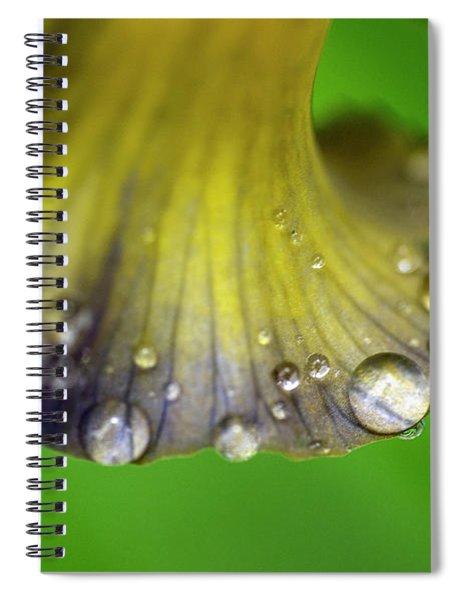 Water Drops On Iris Spiral Notebook