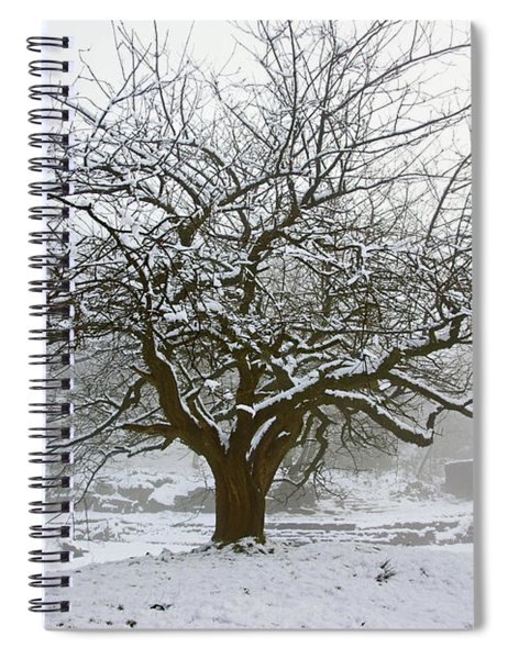 30/01/19  Rivington.  Japanese Pool. Snow Clad Tree. Spiral Notebook