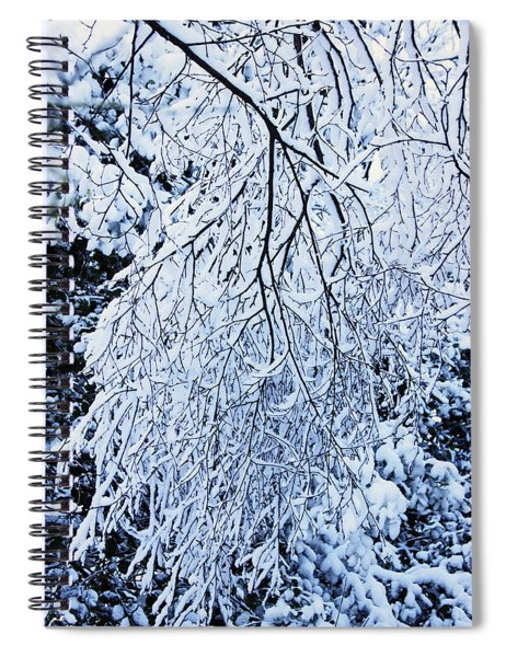 30/01/19  Rivington. Snow Covered Branches. Spiral Notebook