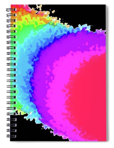 4-8-2010ga Spiral Notebook