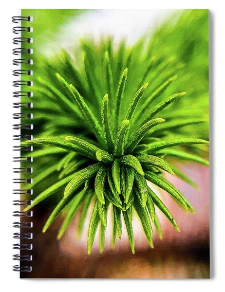 Green Spines Spiral Notebook