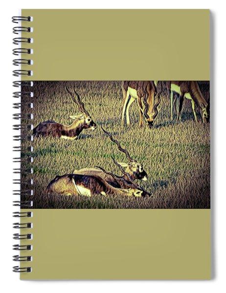 Animal Spiral Notebook
