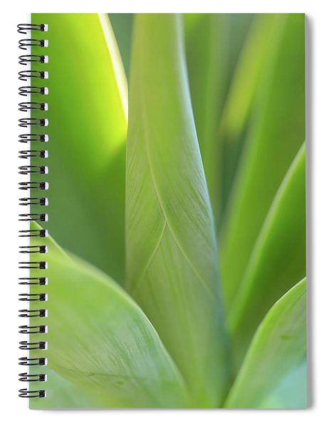 A Bouquet Of Leaves Spiral Notebook