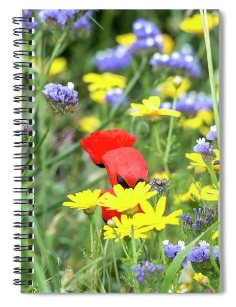 Spiral Notebook featuring the photograph A Bunch Of Colors 02 by Arik Baltinester