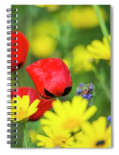 Spiral Notebook featuring the photograph A Bunch Of Colors by Arik Baltinester