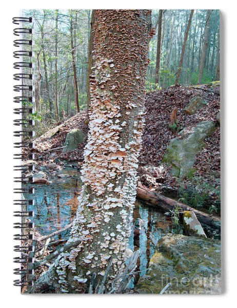 A Coat Of Her Own Spiral Notebook