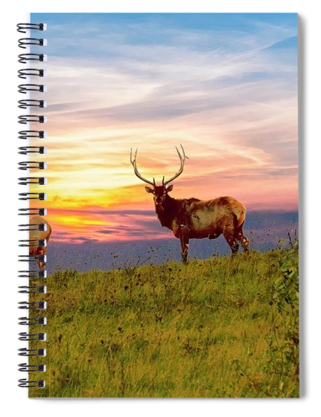 A Cow And Bull Elk Standing On Top Of A Ridge. Spiral Notebook