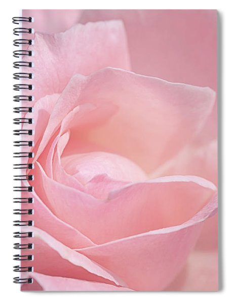 A Delicate Pink Rose Spiral Notebook