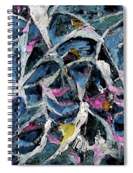 A Fine Web Spiral Notebook