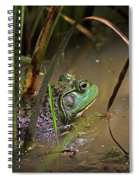 A Frog Waits Spiral Notebook