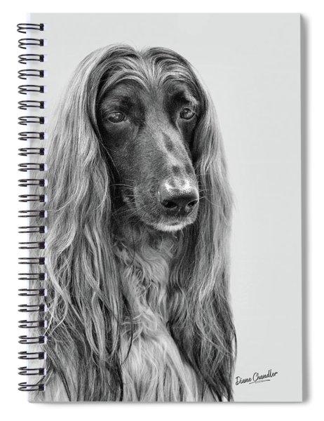 A Kind And Regal Spirit Spiral Notebook