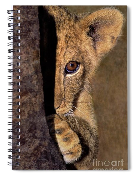 A Lion Cub Plays Hide And Seek Wildlife Rescue Spiral Notebook