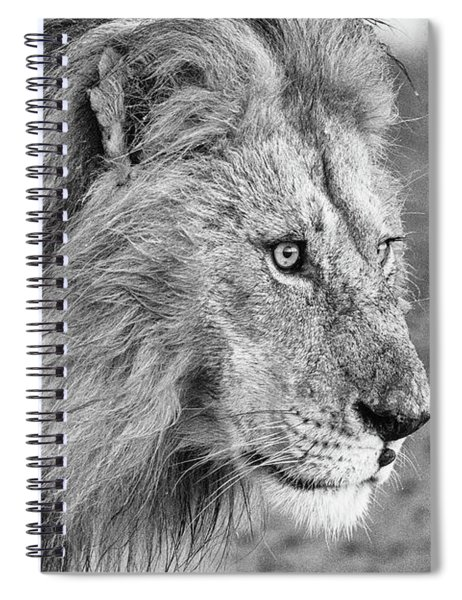 A Monochrome Male Lion Spiral Notebook