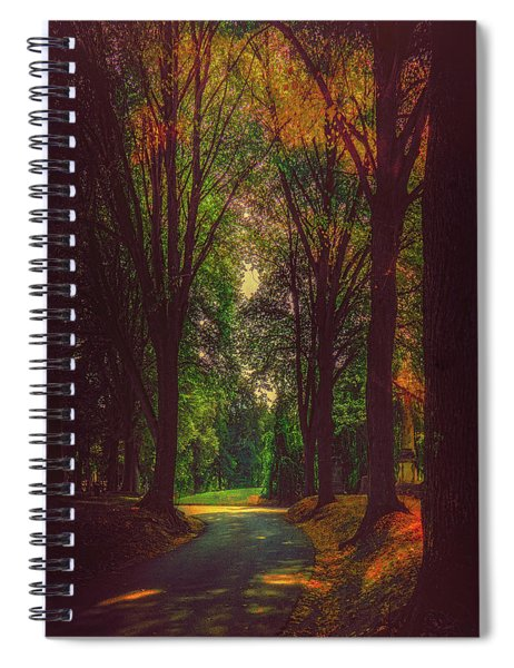 A Moody Pathway Spiral Notebook