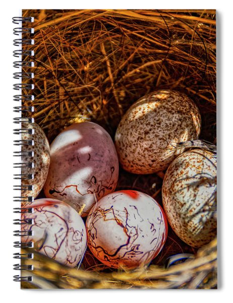 A Nest Of Cactus And Hay On The Ground Spiral Notebook
