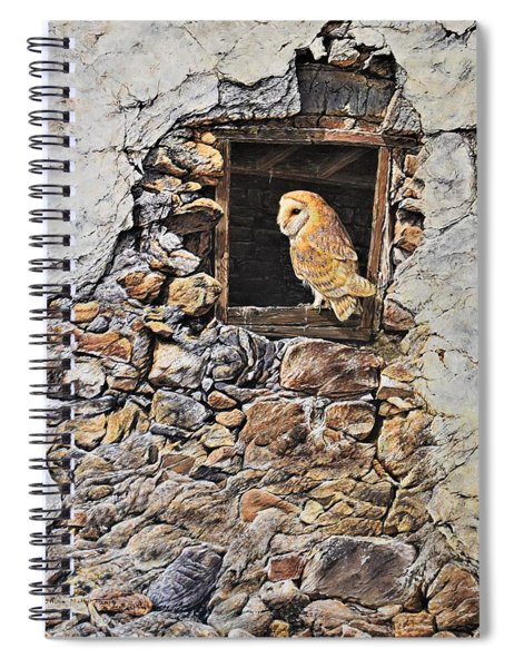 A New Home Barn Owl Spiral Notebook by Alan M Hunt