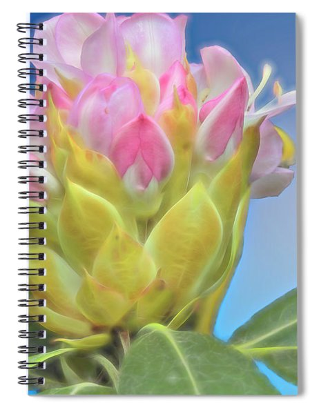 A Single Wild Rhododendron Blossom. Spiral Notebook