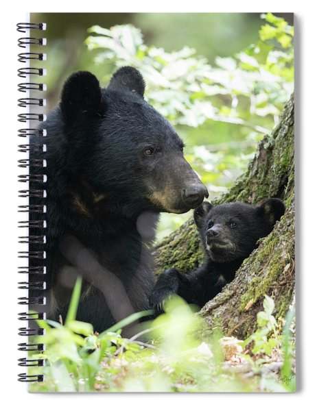 A Sunny Morning With Mom Spiral Notebook