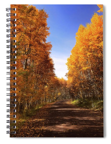 A Walk Down Memory Lane Spiral Notebook