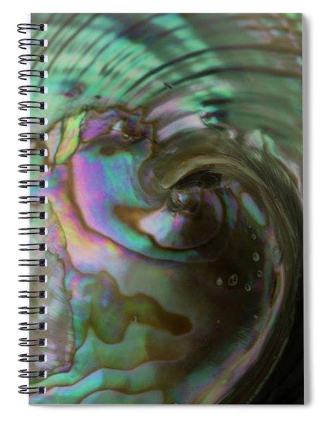 Abalone_shell_9903 Spiral Notebook
